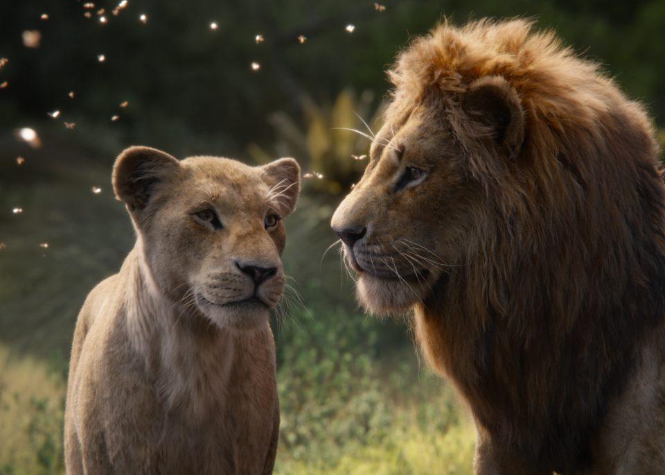 Il Re Leone, un live action sui generis