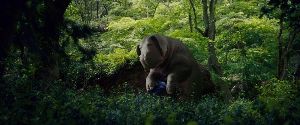Il maiale in CGI